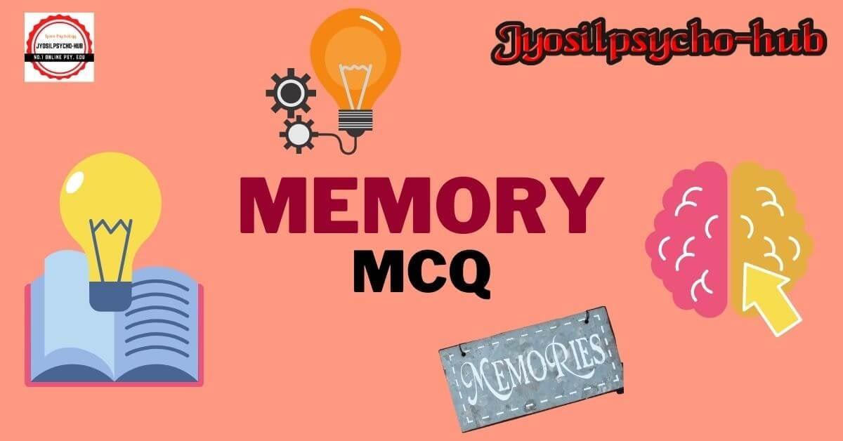Memory (Jyosilpsycho-hub-website)