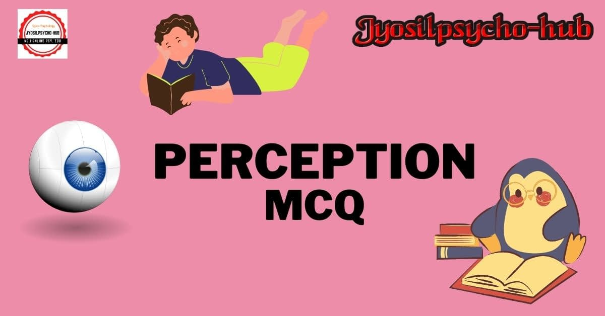 Perception (Jyosilpsycho-hub)